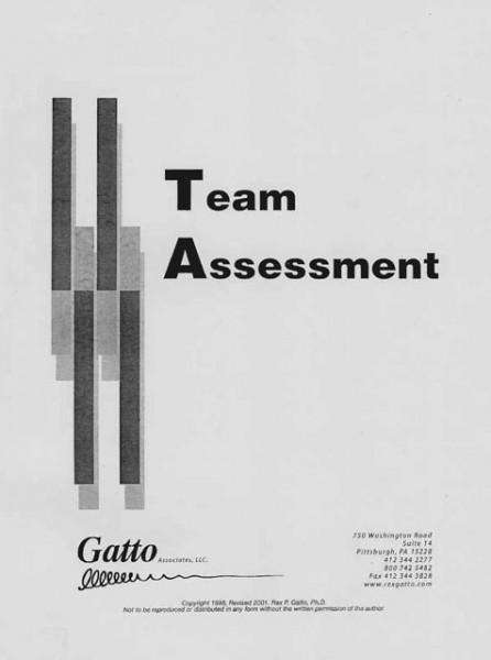 Team-Assessment